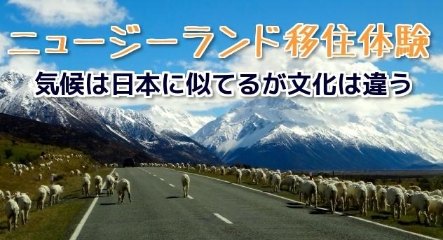 ニュージーランド移住体験|気候は日本に似てるが文化は違う